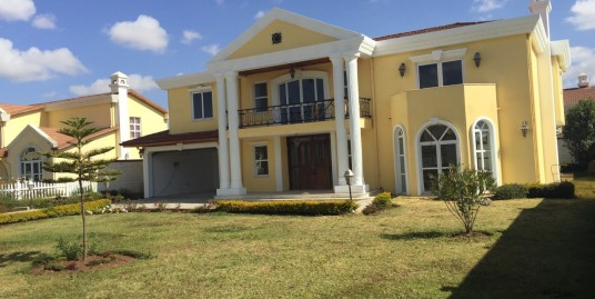 Luxurious House for Sale in the Suburb of Addis