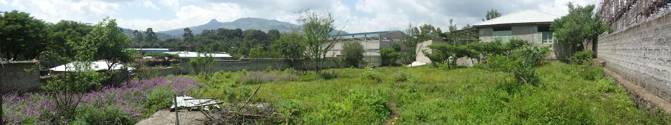 Land for Sale in Sebeta Industrial Zone
