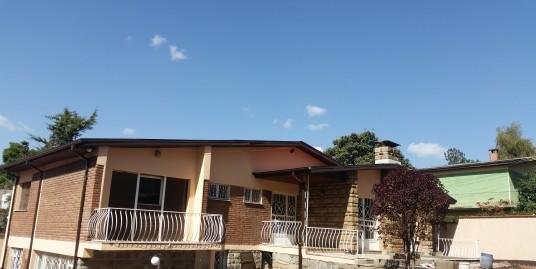 Newly Renovated House in Bole