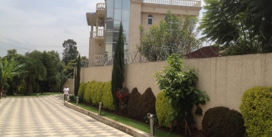 Beautiful Family House For Rent in Old Airport, Addis Ababa