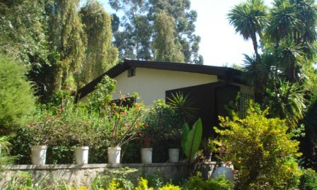 Cozy Villa For Rent in Addis Ababa, For Garden Lovers