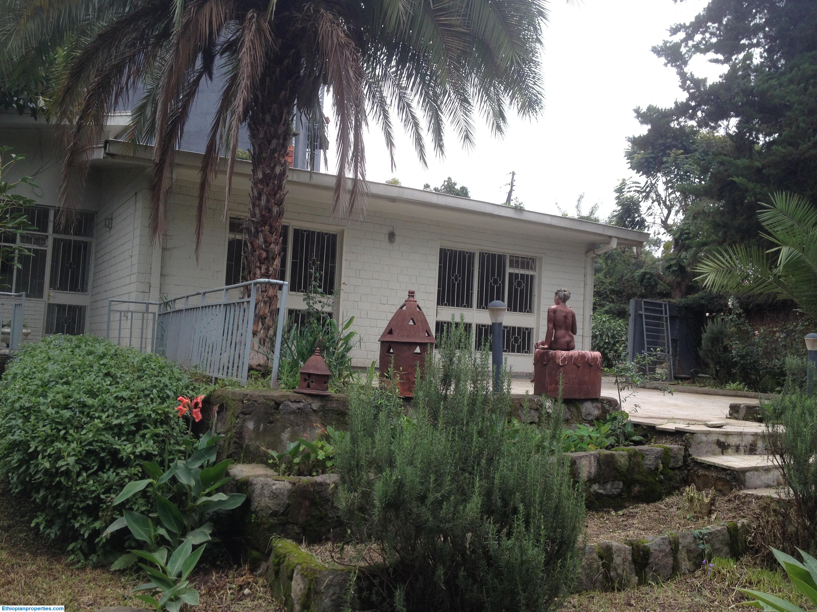 House with beautiful garden for rent in Bole, Addis Ababa