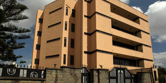G+4 Luxurious Apartment Building For Sale in Bole, Addis Ababa