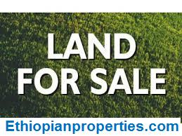Land for Sale in Bole Homes Area
