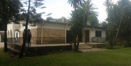 Villa with big garden for rent in Cazanchis