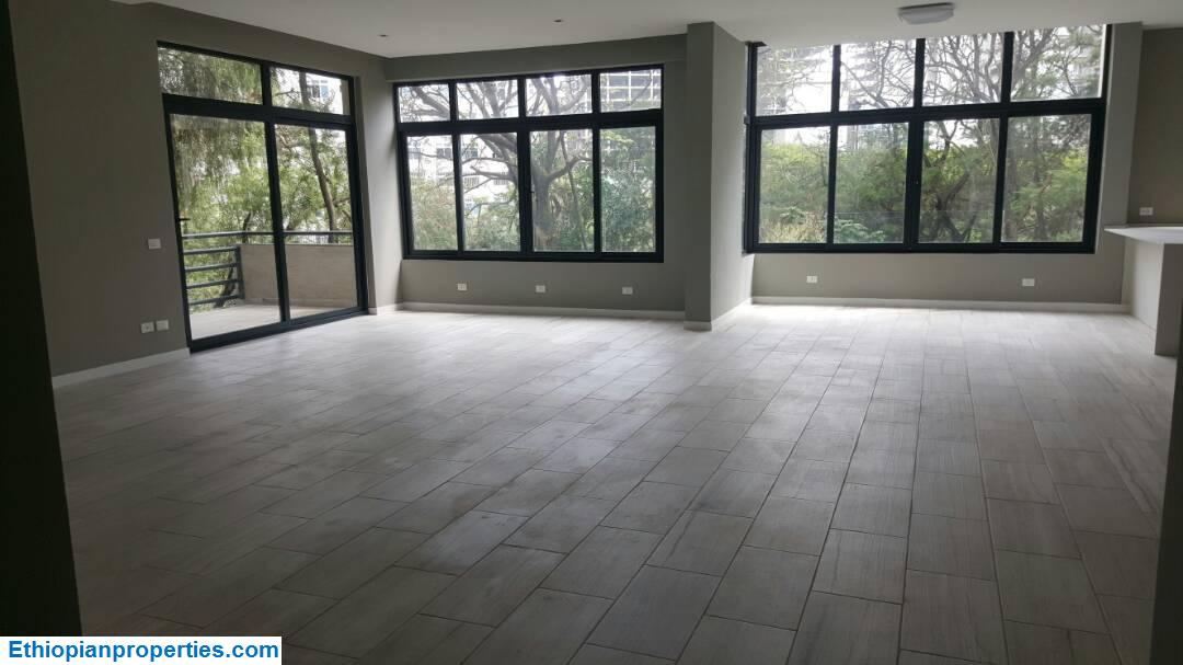 Luxurious New Apartments for Rent in Bole