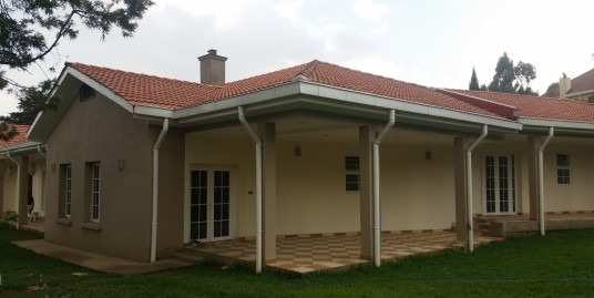 Luxurious Home for Rent in Addis Ababa