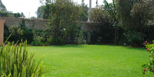 Plot of Land/Old House for Sale in Bole, Addis Ababa