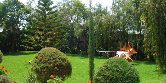 House with Fabulous Garden for Rent