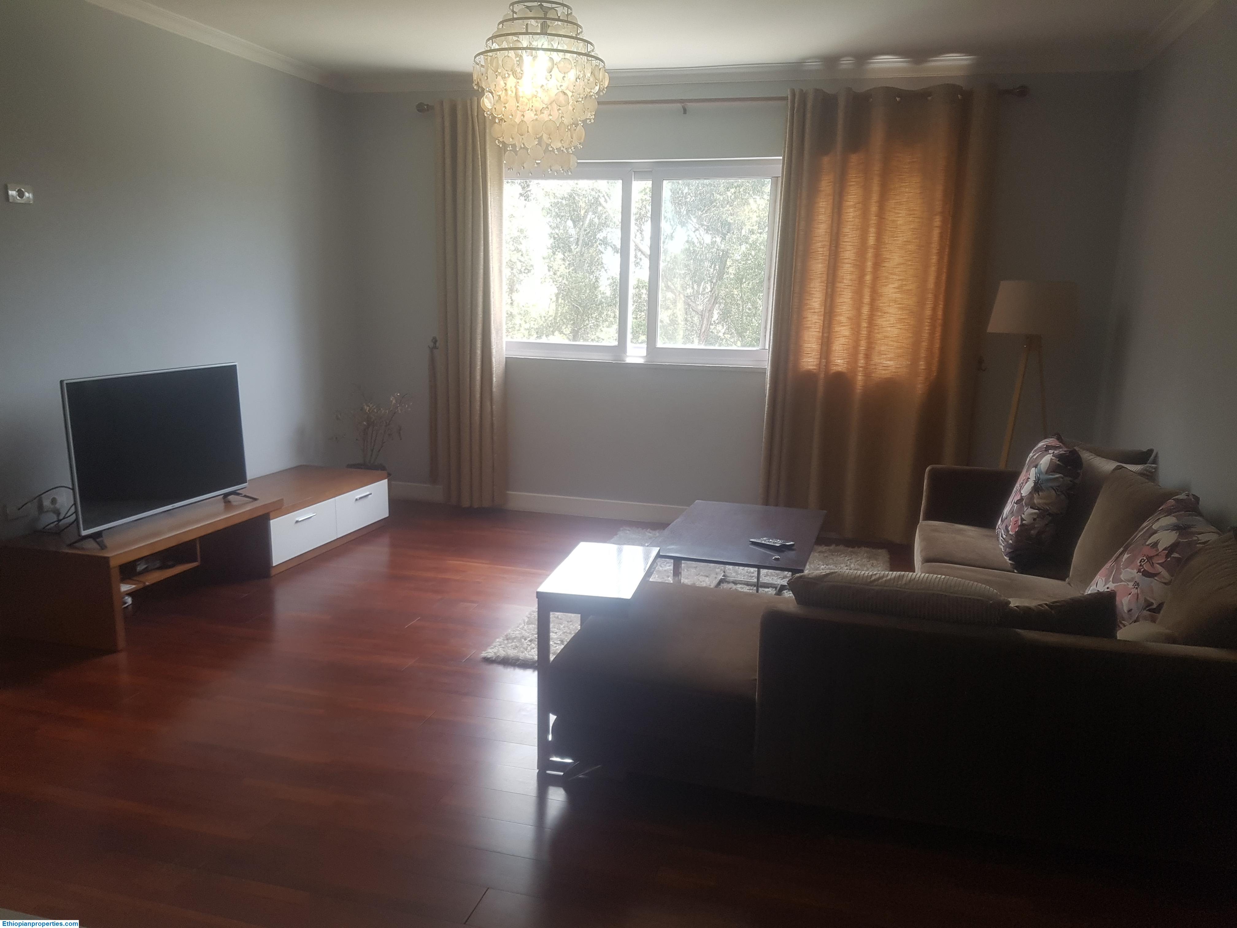 2 Bedroom Furnished Apartment For Rent In Bole